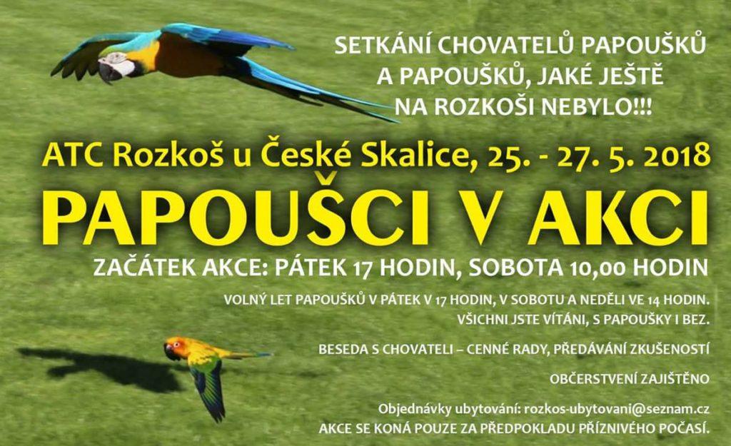 plakát setkání chovatelů papoušků